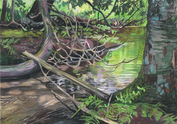 River With Tangled branches 19.5x27.5